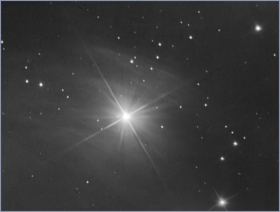 Star, fciwomenswrestling