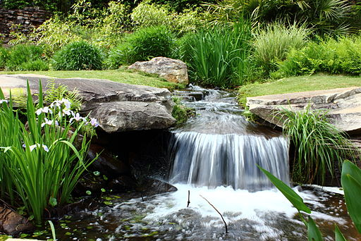 Aldridge_Gardens_Waterfall-wikimedia-fciwomenswrestling.jpg